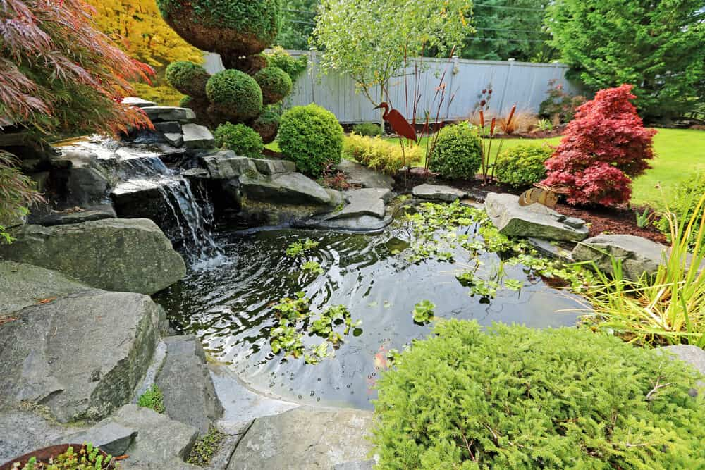A large and amazingly designed fishpond with plants and decorative stones.