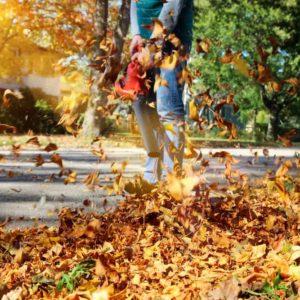 A man using a leaf blower during fall season.