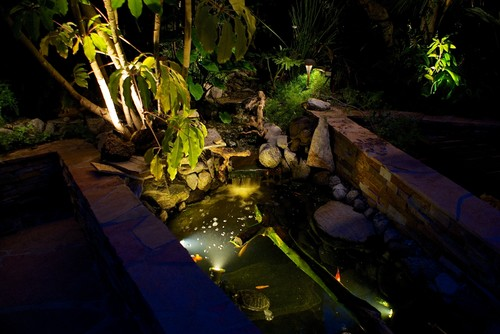 Lighted fish pond with a modern design.