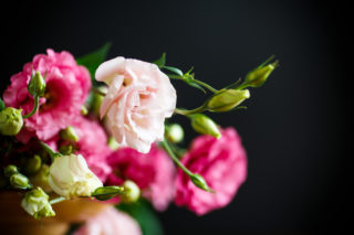 25 Different Types of Lisianthus Flowers (Plus Fun Facts and Its Many Advantages)