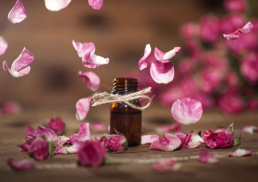 Pink rose petals falling on wooden desk where a bottle of essential oil stands.