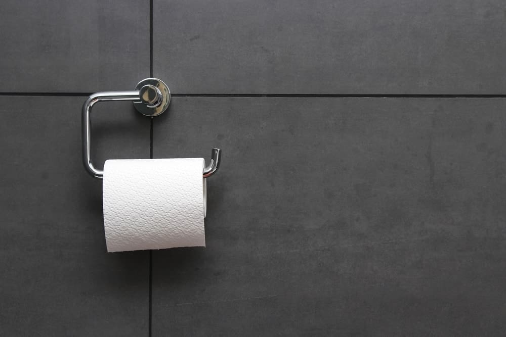 Toilet Paper Holder : 31 different types of toilet paper holders