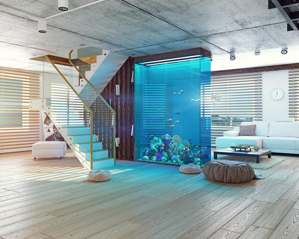 Aquarium wall in an apartment