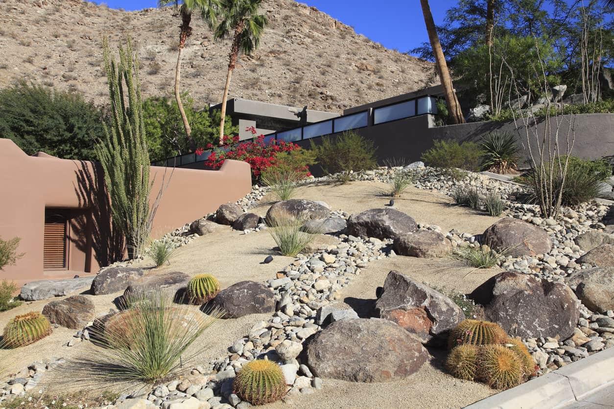 Xeriscaped Desert Residential Landscaping Garden