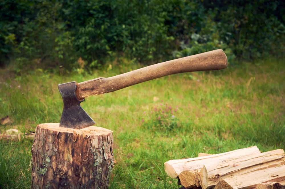 An axe that is stuck on a tree trunk.