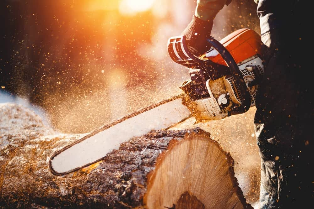 A lumberjack uses a chainsaw to cut the log.