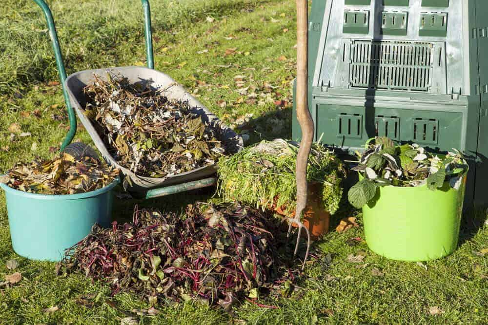 Organic waste materials to be used as alternative to mulch.