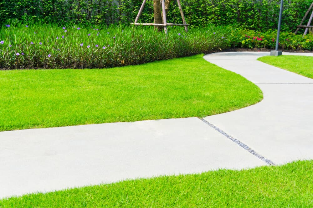 A lawn with curvy and soft edges.