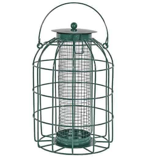 Dark green, metal, caged bird feeder.