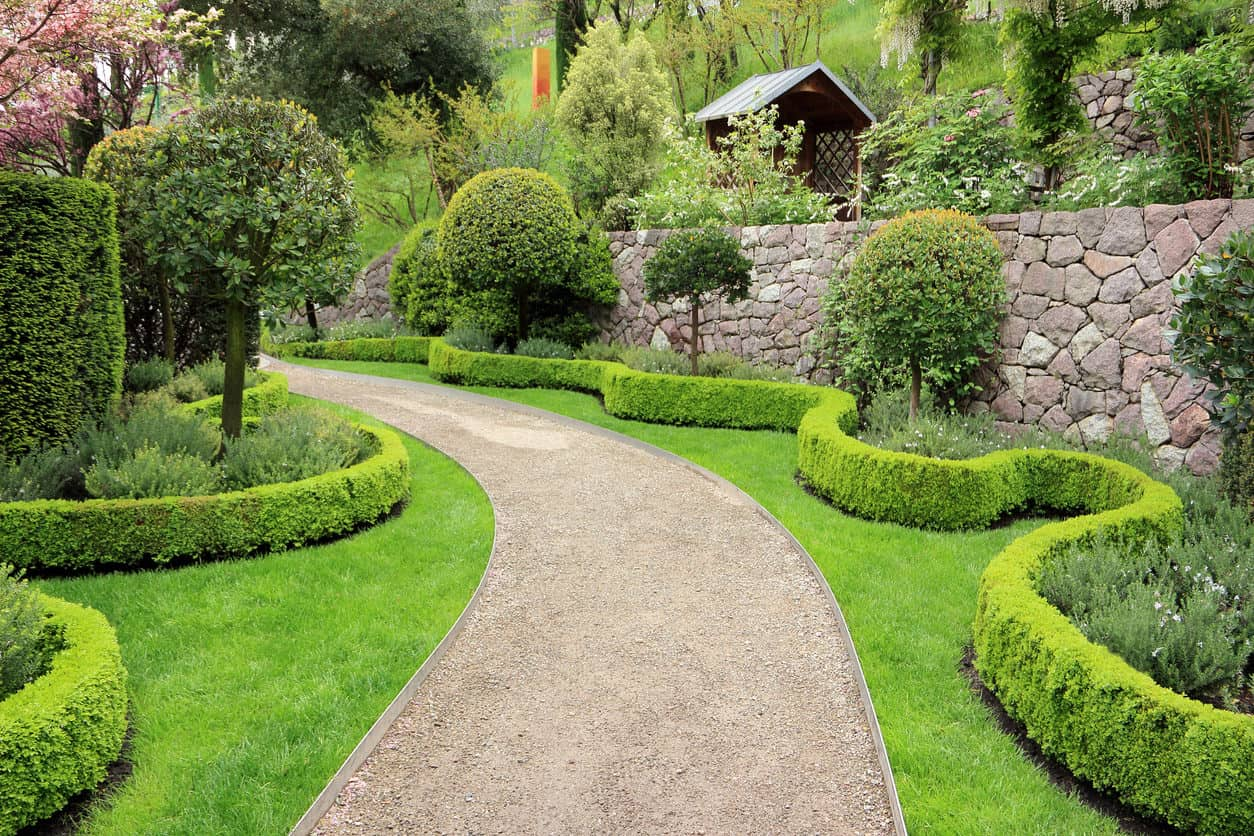 Decorative boxwood hedge garden