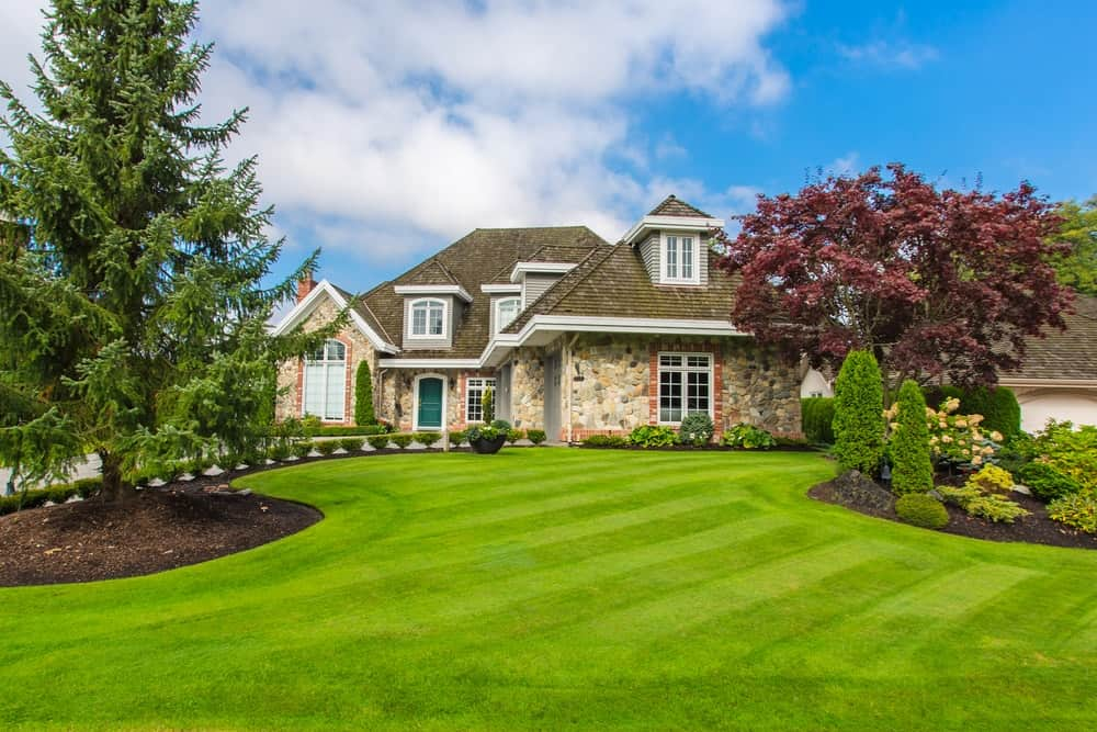 Nicely trimmed lawn and front yard in front of a luxury house.