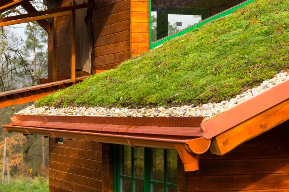 House with a green roof