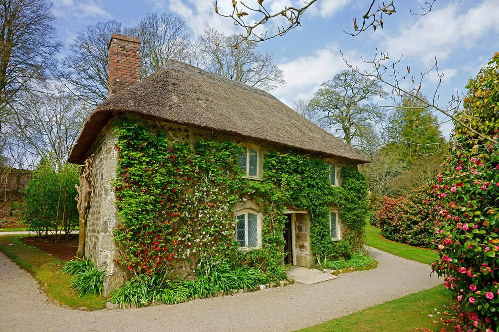 Old quaint cottage home with ivy-covered front facade.