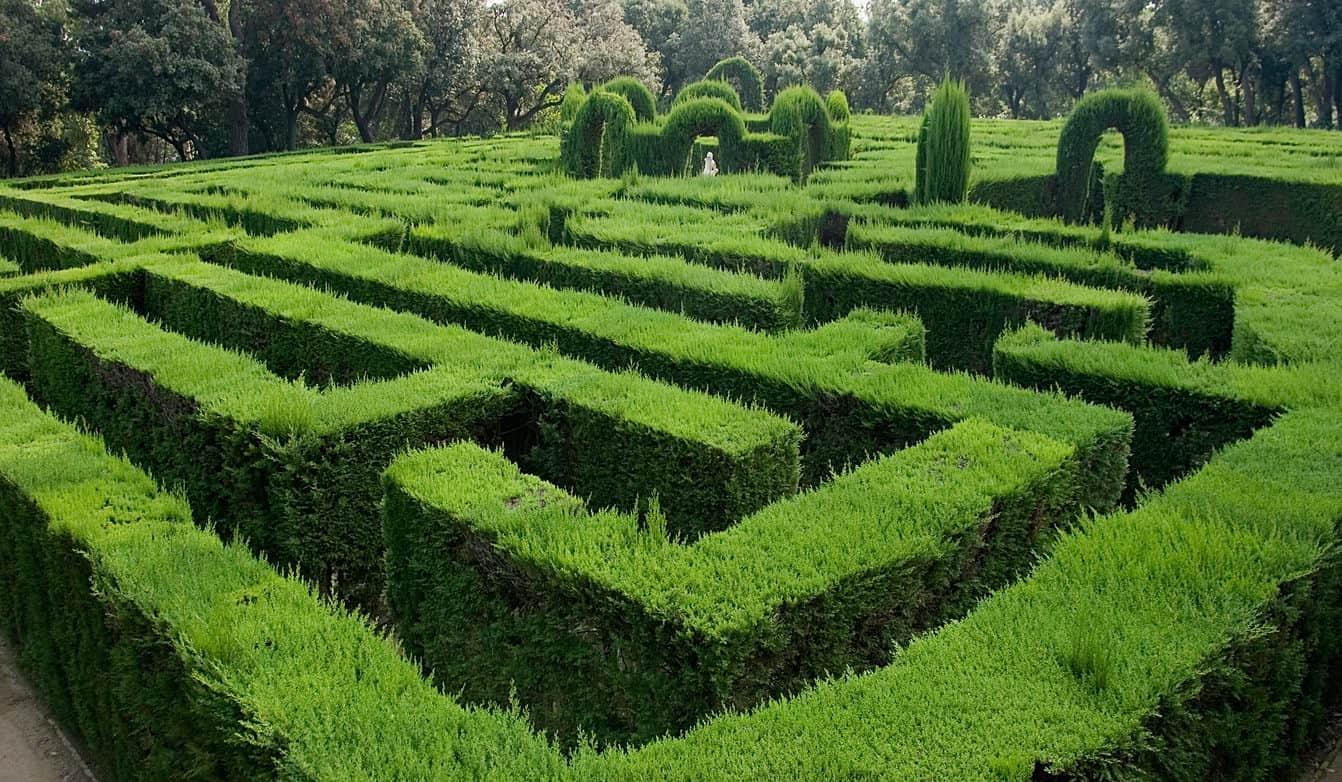 A labyrinth garden
