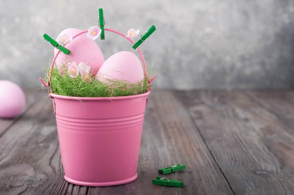 Pink bucket for nesting with two green clippers.
