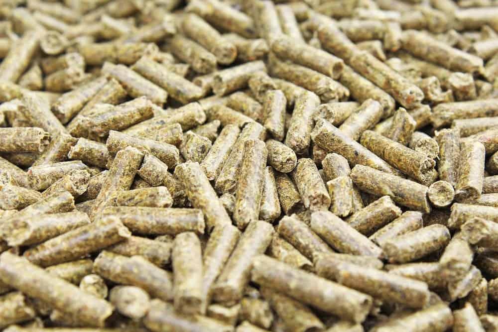Close up of rabbit food pellets cat litter.