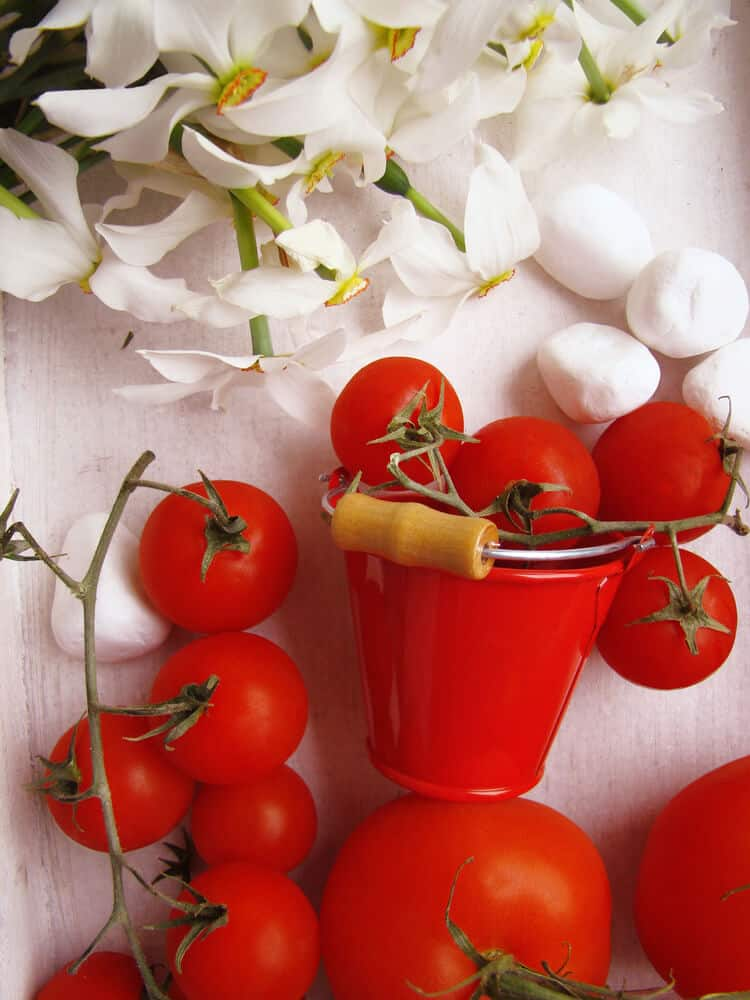 An extra small red bucket perfect for storing tomatoes and garlic.