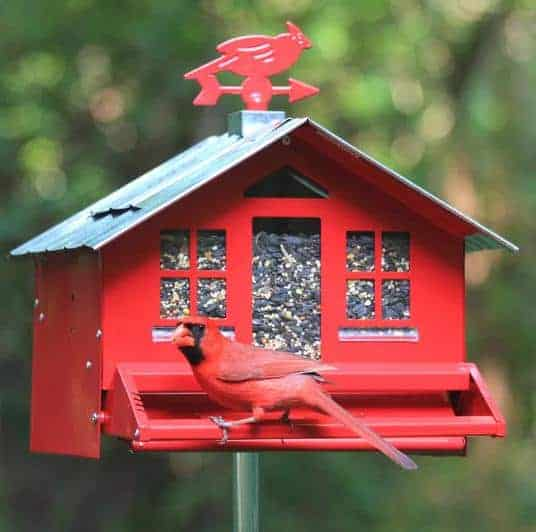 Red, house-like bird feeder complete with windows.
