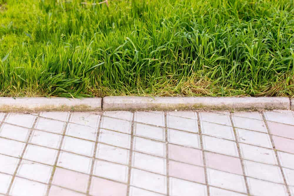 A solid barrier in a form of concrete used as a lawn edging.