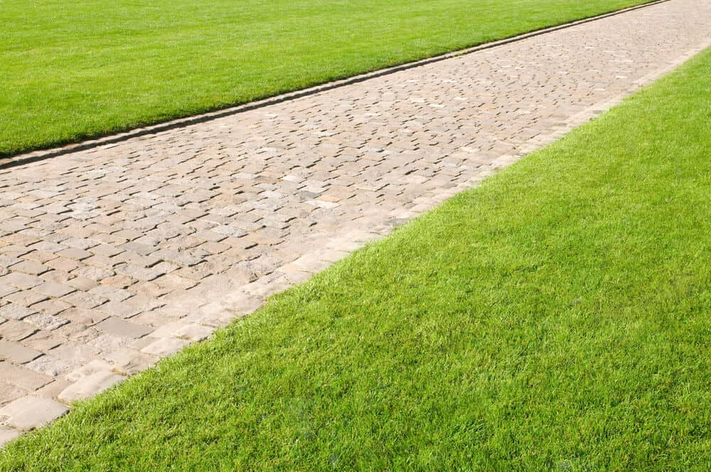 Lawn with straight edges.