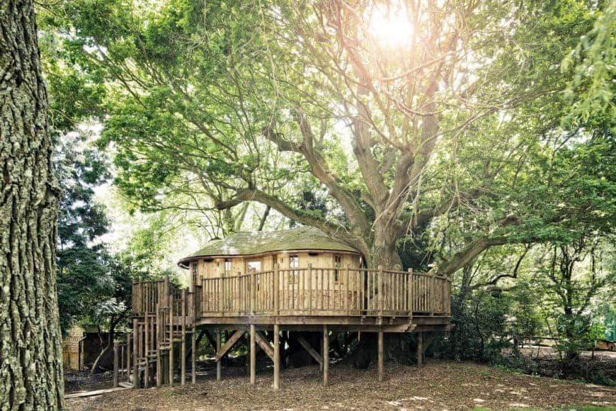 A treehouse beside a large and old tree. It is built beautifully.