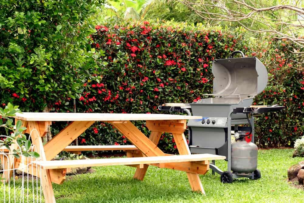 A wooden picnic table and a barbecue grill stand at a green backyard.
