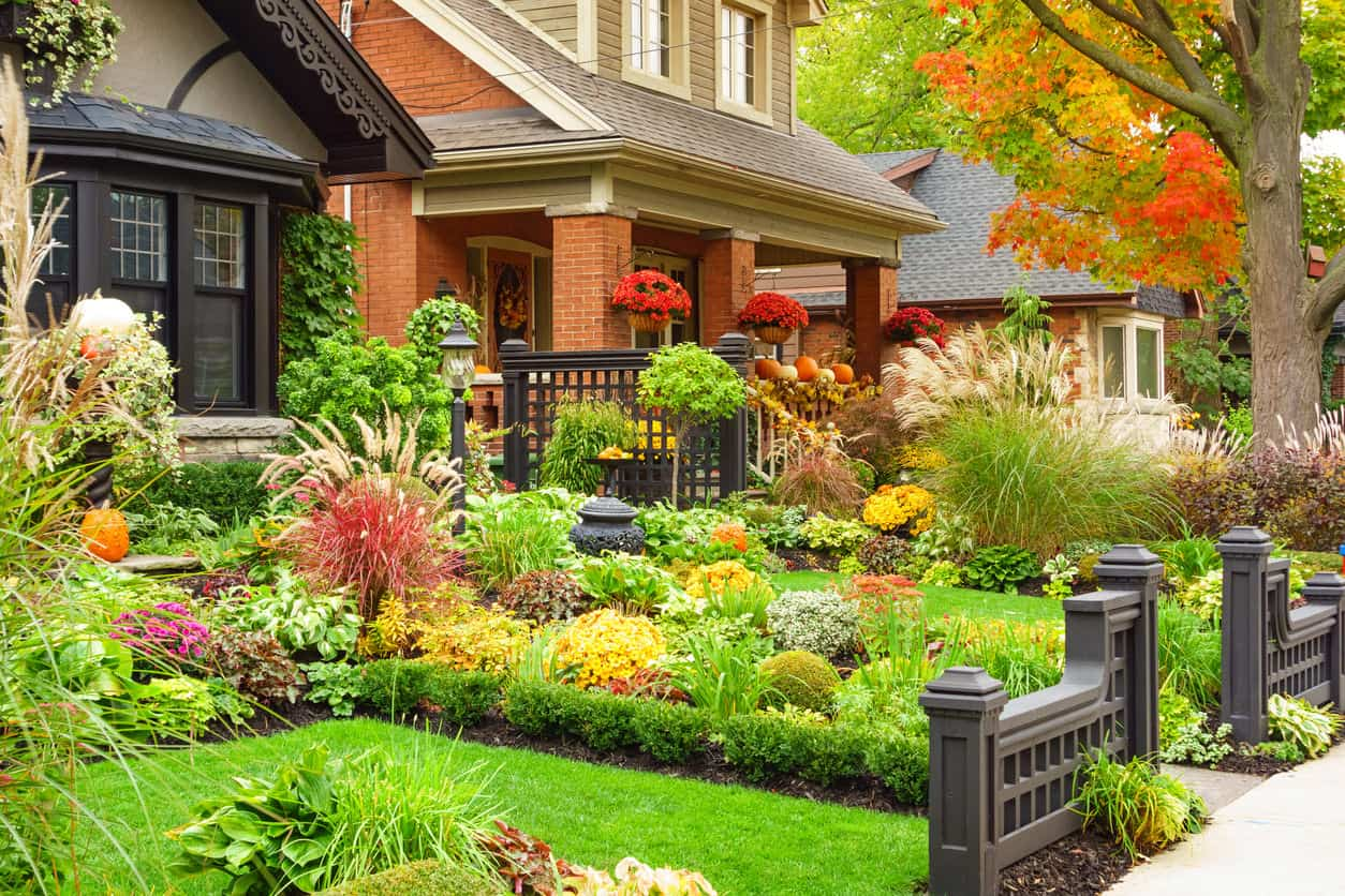 Stunning small front yard with a beautiful garden