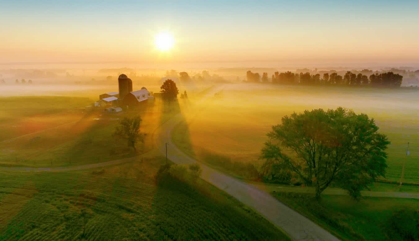 Aerial view of farm at sunrise