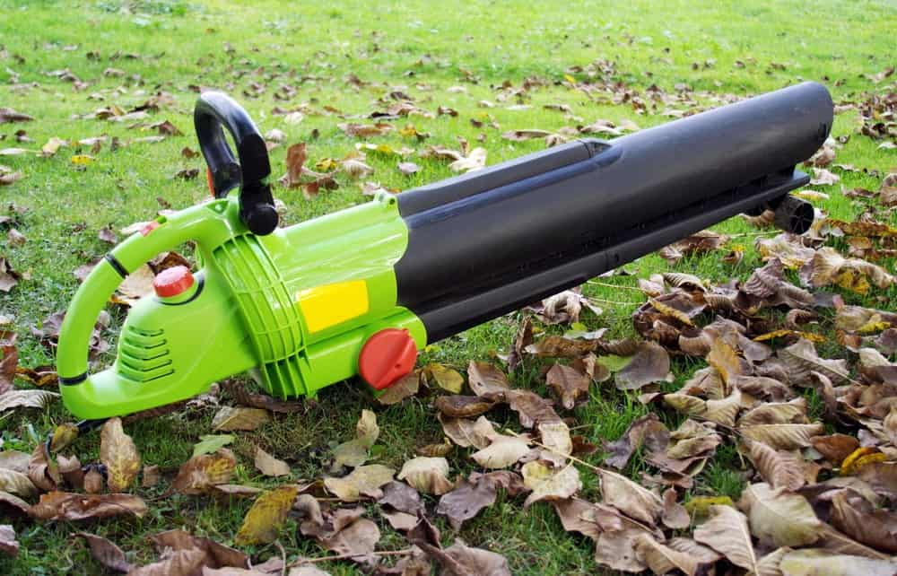 Leaf blower placed on the lawn ground surrounded by dried leaves.