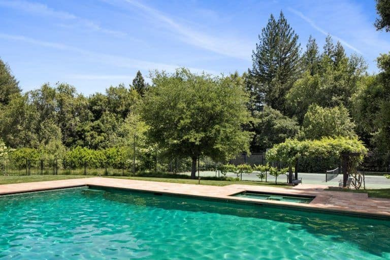 The swimming pool is surrounded by mature trees and is mirroring the San Francisco skies.
