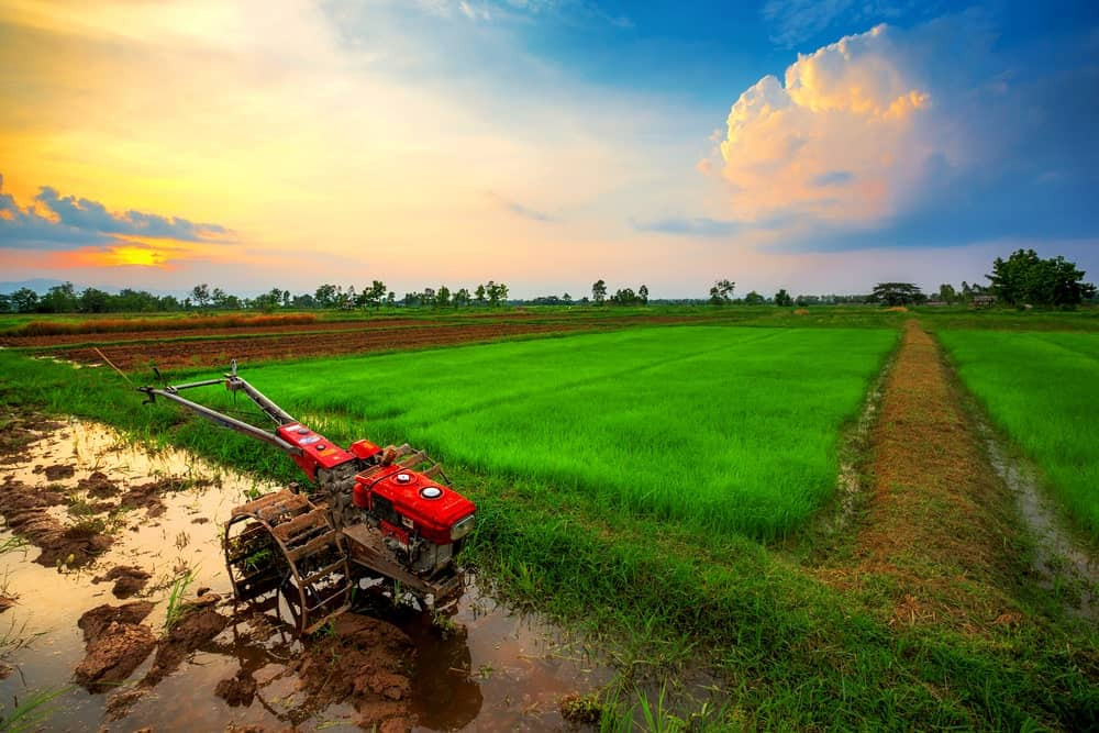 Red power tiller at rest on a rice fields at sunrise.