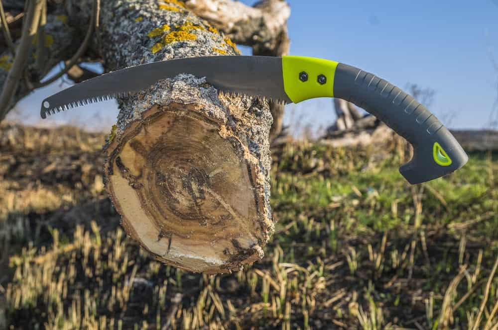 Pruning saw resting on a log.