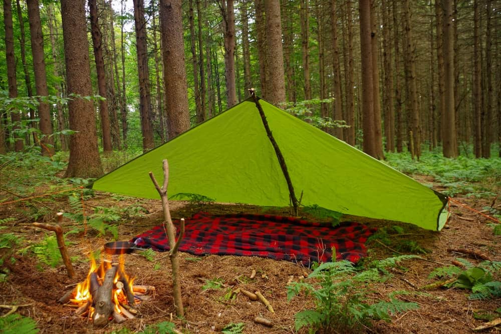 A tarp pitched in a forest with a bonfire nearby.