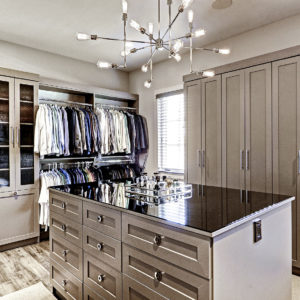 "31 Stunning ""Closet Works"" Storage Designs and Projects"