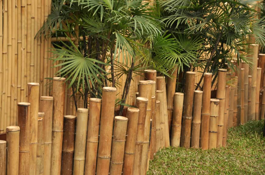 bamboo post fence with plants for added privacy