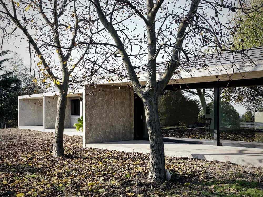 This is a view of the house that has concrete walls paired with glass walls and tall trees for the landscape.