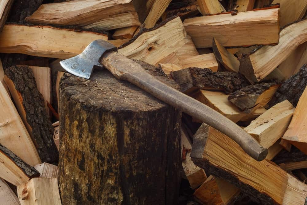 Felling ax on a stump surrounded by chopped logs.
