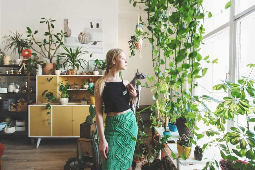 A young woman holds a cat while gazing at the window in a room full of indoor plants.