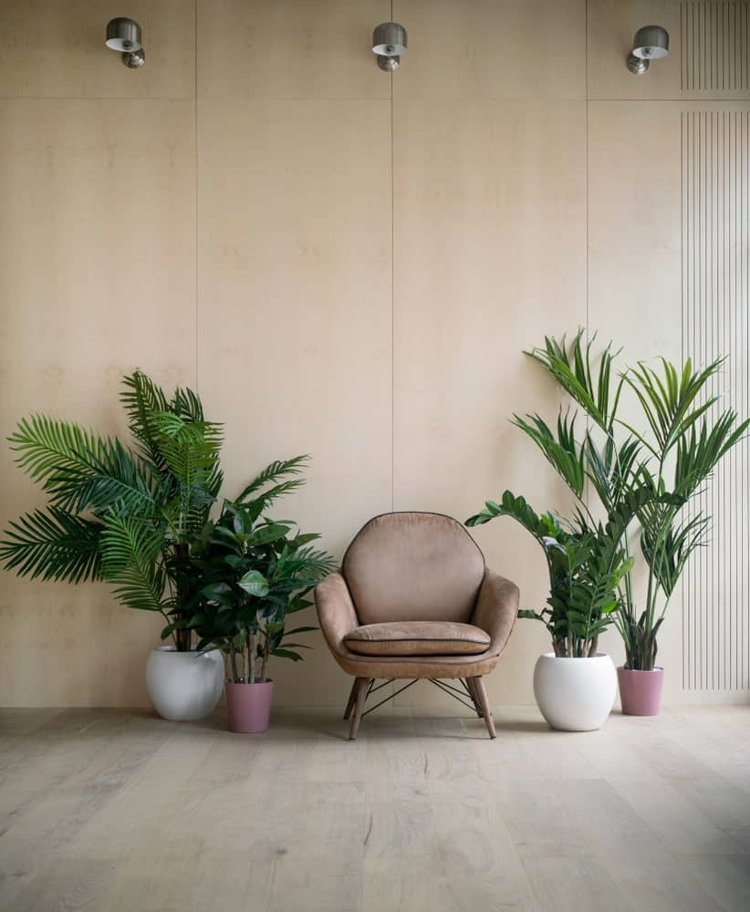 Stylish lounge with plywood walls, wall lamps, and an armchair flanked between indoor plants.