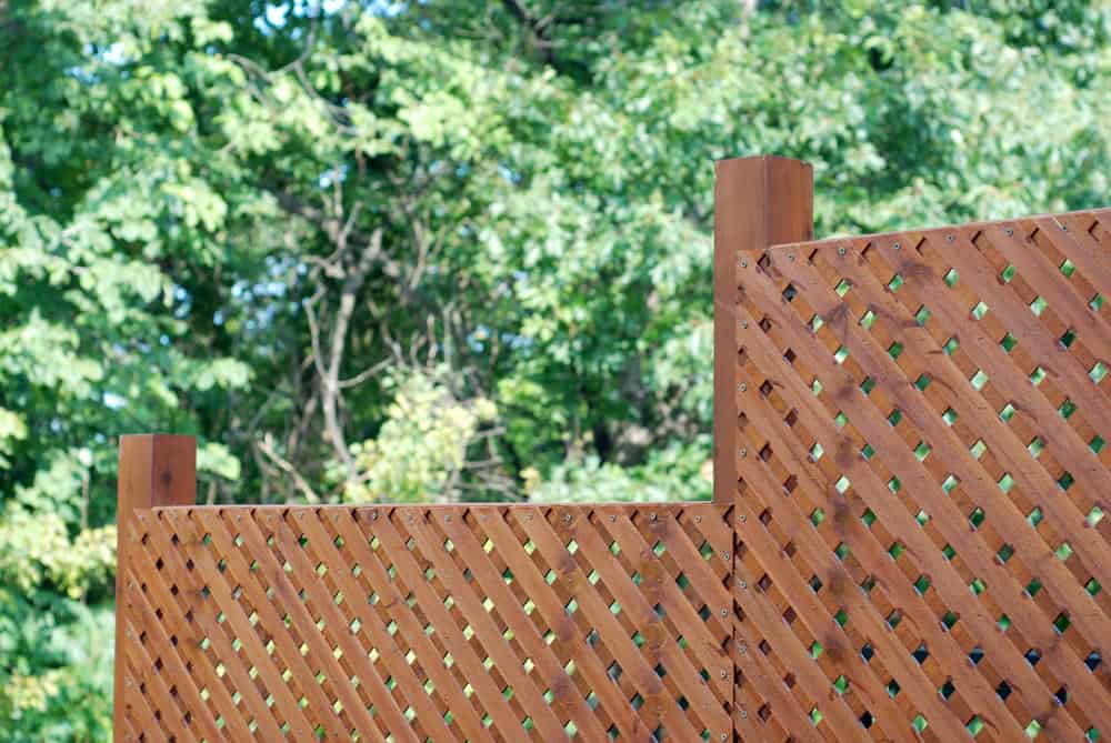 Lattice fence for backyard privacy