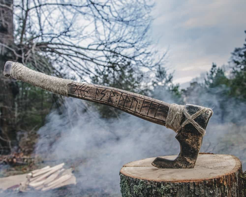 Viking Ax on a stump.