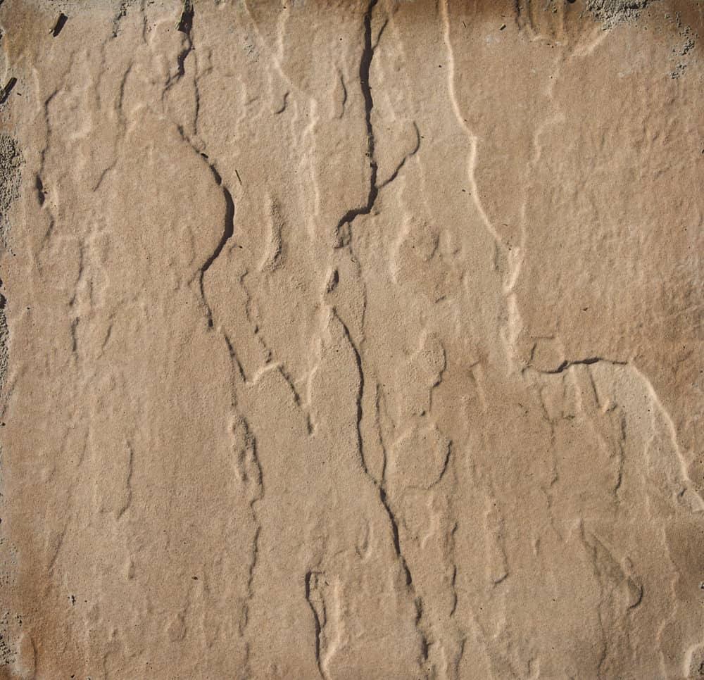 Close-up photo of Arizona flagstone used for landscaping.