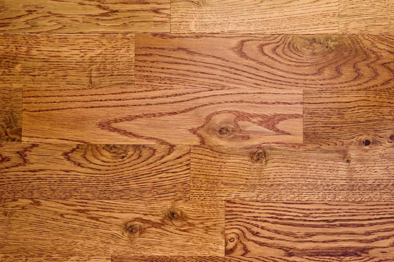 Example of red oak floor