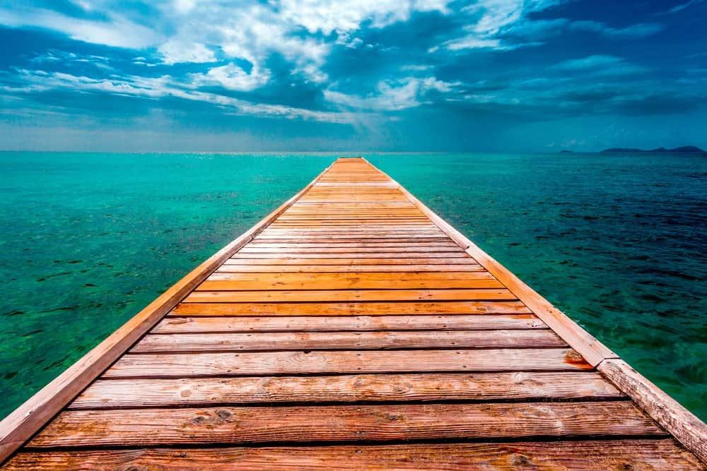 Dock made of cedar on green waters under blue sky.