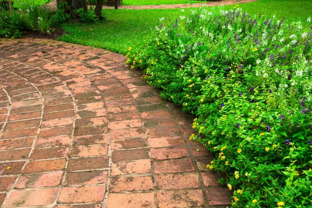 Patio walkway made of clay brick surface.