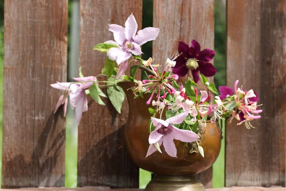 A bouquet of clematis flowers in an old copper pot.