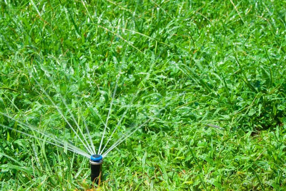 Underground Sprinkler System Watering Grass