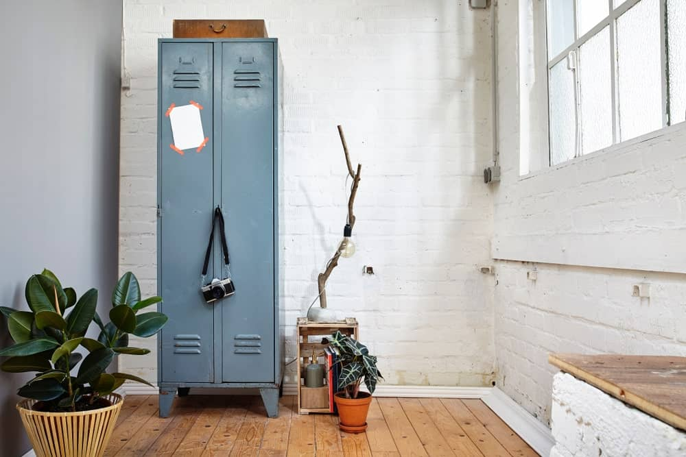 A vintage locker in a tiny whitewashed room with potted indoor plants and wood flooring.
