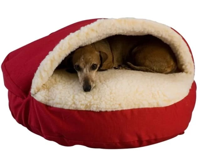 A dog resting on his cave-style dog bed.