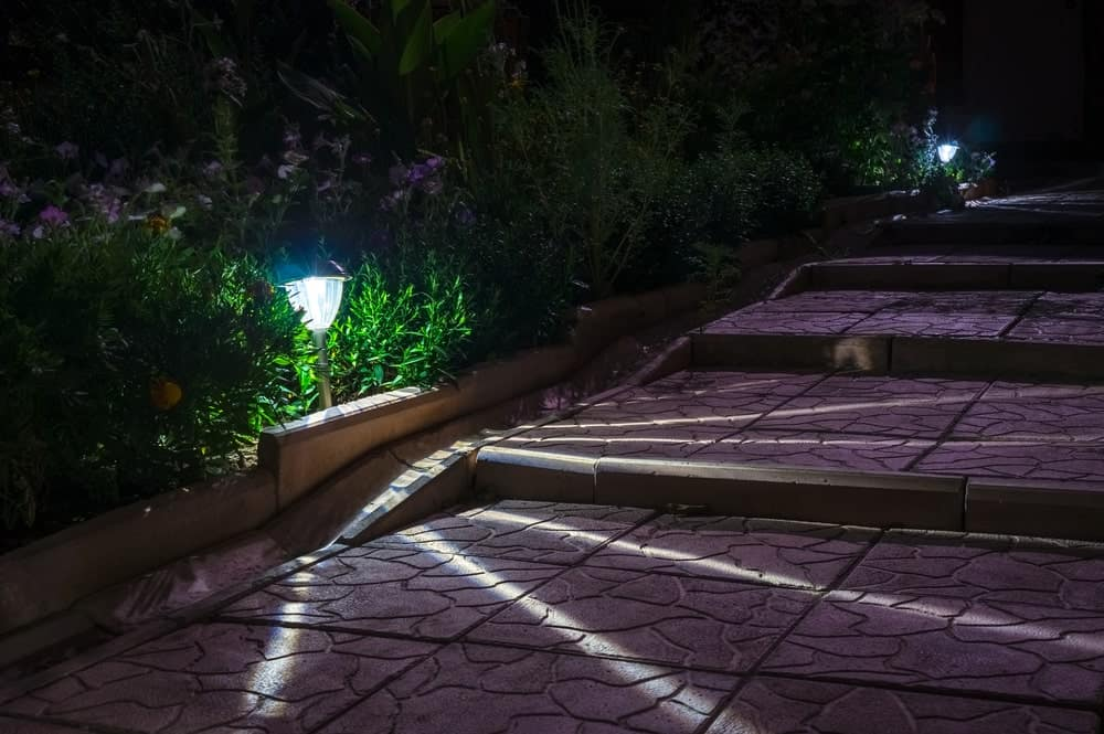 Path solar lights